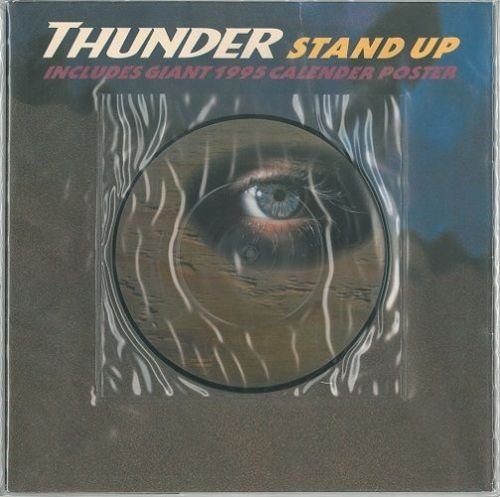 THUNDER Stand Up Vinyl Record 7 Inch EMI 1994 Picture Disc
